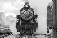 Strasburg Railroad 22 July 2018 (21)_1 (smata2) Tags: railroad steamlocomotive livesteam train strasburgrailroad strasburg