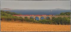 Still & Clear (Welsh Gold) Tags: 66039 6m77 cwmbargoed hope ears sidings coal train portkerry viaduct barry valeofglamorgan southwales