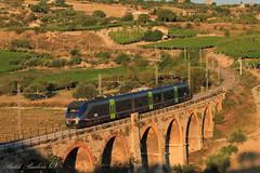 ALe501 xxx, Comitini Zolfare (BaldoBi95) Tags: agrigento ale501 bahn railspotter railfanning rail railfan railway paesaggi landscape italia trenitalia ferrovia fs minuetto