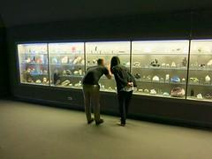 Museum, L.A., .18/11 (Basic LA) Tags: nhmla museum naturalhistorymuseum la socal losangeles expositionpark california gems
