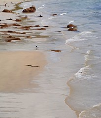 YOU CAN FIND ME WHERE THE MUSIC MEETS THE OCEAN (Irene2727) Tags: beach sand nature waves rocks serenity landscape scape pano panorama