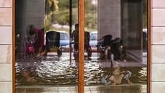 10.06.2018 (Fregoli Cotard) Tags: 161365 161of365 reflection pool swimming swim swimmingpool throughthewindow decisivemoment swimmingclass water waterfun summerfun summertime dailyjournal dailyphotography dailyproject dailyphoto dailyphotograph dailychallenge everyday everydayphoto everydayphotography everydayjournal aphotoeveryday 365everyday 365daily 365 365dailyproject 365dailyphoto 365dailyphotography 365project 365photoproject 365photography 365photos 365photochallenge 365challenge photodiary photojournal photographicaljournal visualjournal visualdiary