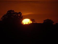 DSC01798 Amanhecer Em Monte Sião MG (familiapratta) Tags: sony dschx100v hx100v iso100 natureza sol céu nature sun sky