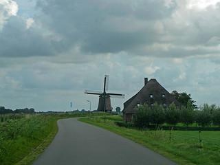 Farmland roadside