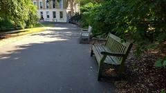"""Lucky Seven"" (standhisround) Tags: hbm bench benchmonday seats kewgardens kew royalbotanicalgardens rbg london england uk gardens garden path trees building"