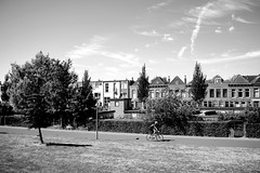 summer in the city-7017 (rwscholte) Tags: architecture pentaxians groningen pentaxk1 netherlands summer blackandwhite bw monochrome aroundthehouse road tree