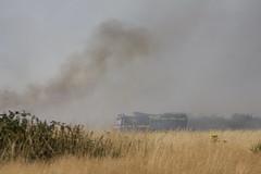 In the thick of it - Wanstead Flats fire (ArtGordon1) Tags: wansteadflats wanstead london england uk summer july 2018 fire danger davegordon davidgordon daveartgordon daveagordon artgordon1