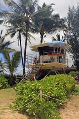Kauai (ClarkT1957) Tags: kauai