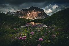 Flowerpower (raimundl79) Tags: wow weather wolke wanderlust wasser water explore exploreme entdecken explorer earth erde d800 digital sky 7dwf tamron2470mm 2470mm fotographie flickrexploreme flickrr foto green grün image instagram österreich photographie perspective panorama urlaub austria alpen lightroom landschaft landscape ländle lichtspiel myexplorer mountain montafon nikon nikond800 new bestpicture beautifullandscapes berge vorarlberg view cloud clouds cloudporn
