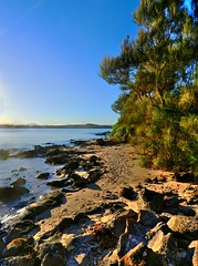 On the island IV (elphweb) Tags: hdr highdynamicrange nsw australia seaside sea ocean water beach sand sandy brouleeisland island rock rocks rockformation