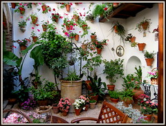 Il pozzo nel patio (magister111) Tags: courtyards andalusia spagna spain