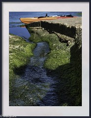 canoe (Mallybee) Tags: sea bay hoods robin f28 1235mm dcg9 g9 lumix panasonic mallybee canoe water