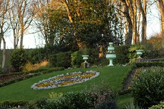 Golden Hour (oddbodd13) Tags: northumberland park northtyneside goldenhour flowers floral plants pot ornamental garden trees