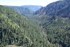 DSC_0190 (theredrainbow) Tags: usa america roadtrip 2018 summer oakcreek sedona arizona travel