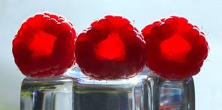 inside / insight raspberries