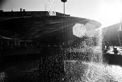 Backlight with a Hektor (mkk707) Tags: film leicastandardmodele leitzhektorf28cm163 blackwhite 35mmfilm vintagelens vintagefilmcamera itsaleica manualfocuslens darmstadt backlight backlit lensflare