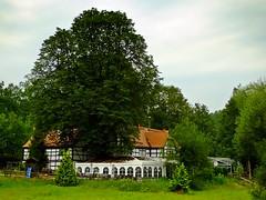Gasthof Lochbauer / Vogtland (fleckchen) Tags: natur gasthof restaurant gasthoflochbauer vogtlandischeschweiz vogtland bäume laubbäume gebäude fachwerkhaus kastanie heimat deutschland