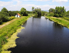 River Zala in Hungary (Yirka51) Tags: house cottage wallpaper tree traveling summer sky river nature herbs green grass flower environment cloud blue background