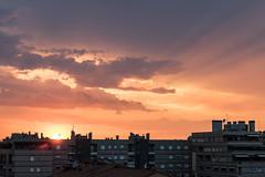 Sunset (Adrià Páez) Tags: sunset city buildings clouds sky light sunlight bologna bolonia emiliaromagna italia italy europe 50mm canon eos 7d mark ii
