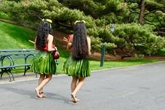 Hula Dancers In The Bronx (Anne Marie Clarke) Tags: candid hawaiian dancers hula nybg newyorkbotanicalgarden outofplace 7dwf anythinggoesmondays