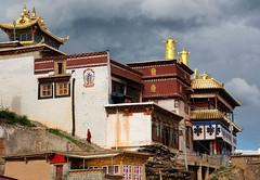 Gansi, Szechuan, China (goneforawander) Tags: backpacking buddhism nikon d7100 travel tibetan goneforawander buddhist szechuan sichuan asia china enzedonline ganzizangzuzizhizhou sichuansheng cn