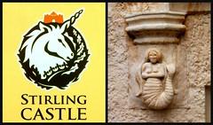 Au Château de Stirling (MAPNANCY) Tags: château sirène stirling