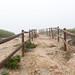 Mist fences (conchagcarpena) Tags: misty mist fog fances landscape