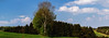 Panoramic Trees (SM_WZ) Tags: germany background backyard beautiful birch blue bright clean cloud environment field grass green landscape meadow natural nature nopeople outdoor park season sky spessart spring summer tree trees white