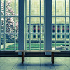 Magnolia (Erik Schepers) Tags: composition museum gallery color minimal minimalism rotterdam netherlands architecture architect boijmans beuningen magnolia bench bankje rest