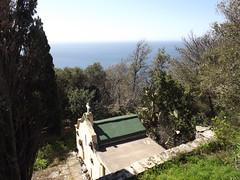 Pinu: tombeau (Vincentello) Tags: pinu pino tombeau cactus tumb mer