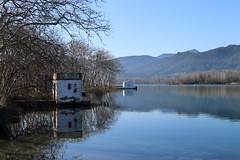 Banyoles_0014 (Joanbrebo) Tags: banyoles catalunya españa es lestanydebanyoles girona canoneos80d eosd efs1855mmf3556isstm autofocus nature naturaleza natura landscape paisaje paisatge llac lago lake reflexos greatphotographers