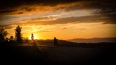 Don't hide the sun (ElmerstarK) Tags: goldenhour landscape sunset nature outdoor nuages orange sun paysage silhouette outside arbre gold coucherdesoleil soleil sky tree cloods exterieur contrast ciel saintcyraumontdor auvergnerhônealpes france fr
