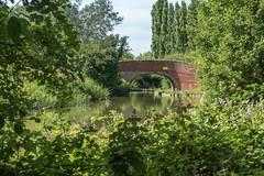 Gyosei Art Trail - Milton Keynes - 1st July 2018 (Trackside70) Tags: gyosei arttrail art sculpture canal miltonkeynes buckinghamshire uk sunshine summer sony dscrx100m3