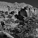 The Whole of a Setting Around Hickman Bridge (Black & White, Capitol Reef National Park)