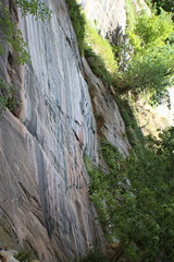 IMG_3664 (Egypt Aimeé) Tags: narrows zion national park canyons pueblos utah arizona