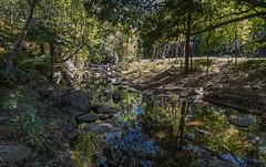 Korrumbyn reflections (OzzRod) Tags: pentax k1 hdpentaxdfa1530mmf28 landscape korrumbyncreek creek pool reflections boulders trees shrubs tweedvalley nsw pentaxart
