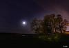 Starlight (ErikStrotPhotography) Tags: starrynight oregon oregonexplored stars tualatinriverwildliferefuge sigma16f14 bestoforegon astrophotography longexposure sonya6300 sony traveloregon moonlight nightsky star