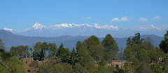 Ranikhet view of great Himalaya. (draskd) Tags: ranikhet golfgrounds panorama pano landscape mountain forest sky roadtonainital uttarakhand india naturalbeauty