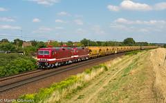 243 931 und 650 in Zeithain (Emotion-Train) Tags: zeithain delta rail 243931 243650