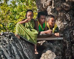 DSC_0200 (yakovina) Tags: silverseaexpeditions indonesia den weg island papua new guinea