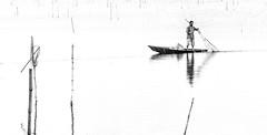 FISHING-STORY (mailmesanu20111) Tags: hikey blackandwhitephotography monochrome transport risktransport boat wetland westbengal nikon nikonflickraward nikoncontest nikonindia journalism journey people indianpeople contrast whiteblack india