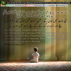 infants-are-in-Paradise-and-children-buried-alive-are-in-Paradise (aamirnehal) Tags: quran hadees hadith seerat prophet jesus moses book aamir nehal love peace quotes allah muhammad islam zakat hajj flower gift sin virtue punish punishment teaching brotherhood parents respect equality knowledge verse day judgement muslim majah dawud iman deen about son daughter brother sister hadithabout quranabout islamabout riba toheed namaz roza islamic sayings dua supplications invoke tooba forgive forgiveness mother father pray prayer tableegh jihad recite scholar bukhari tirmadhi