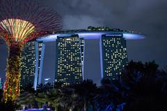 Singapore at Night (AndrewL AU) Tags: gardensbythebay lights marinabaysands nightscape singapore skytree nightsky