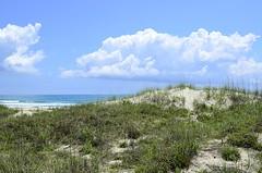 Sand and Sea (pjpink) Tags: beach sand sea shore coast coastal eastcoast crystalcoast capelookout northcarolina nc carolina may 2018 spring pjpink 2catswithcameras