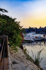 Another shot on the banks of the Nile (basem_teacher) Tags: egyptian egypt cairo couple summer trip explore adventure photoshopcc photographer photography 50mm d850 nikon nile landscape lightroom awesome amazing scenery scene sunset beautiful moments