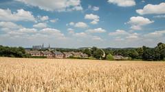 Summer 2018 (Explored) (Jamarem) Tags: ratcliffeonsoar power station cooling towers nottinghamshire kegworth leicestershire gotham hills cereal crop landscape