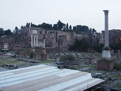 (procrast8) Tags: rome italy forum column phocas basilica julia