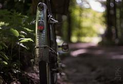 Roads like these (koperajoe) Tags: woodland ranndonneur bicycle 650b lefol roadslikethese bokeh bike frenchfender cycling velo