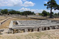 IMG_4936 Paestum (drayy) Tags: paestum rome roman ancient magnagraecia temple town italy europe campania greek
