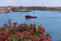 Malta, June 2018 262 (tango-) Tags: malta malte мальта 馬耳他 هاون isola island lavalletta valletta porto port